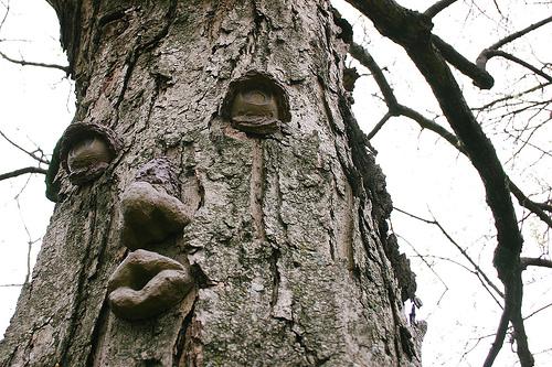прикольное дерево