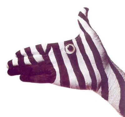 прикол рука зебра