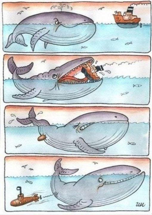 карикатура море